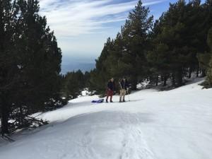 Ballade en Raquette au Mont Ventoux 8-03-15 (22)